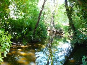 ruisseau de Poulancre
